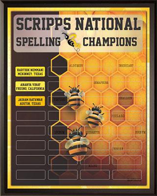Spelling Champions Award Plaque
