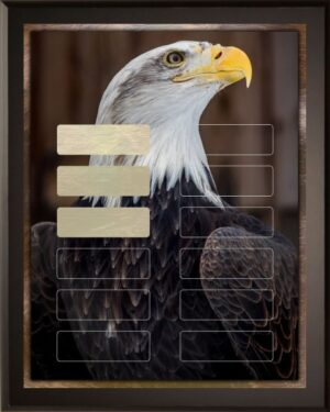 American Eagle | Perpetual Recognition Award 12 Plate Plaque