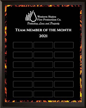 Team Member of the Month